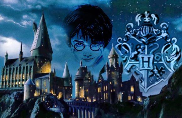 Harry Potter et le secret de Poudlard